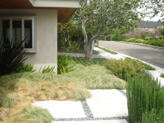 Outer space landscape architecture san francisco bay for Outer garden